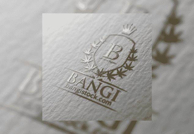 Bangi Inc