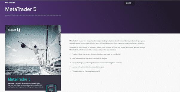 AnalystQ Reviews - MetaTrader 5 platform